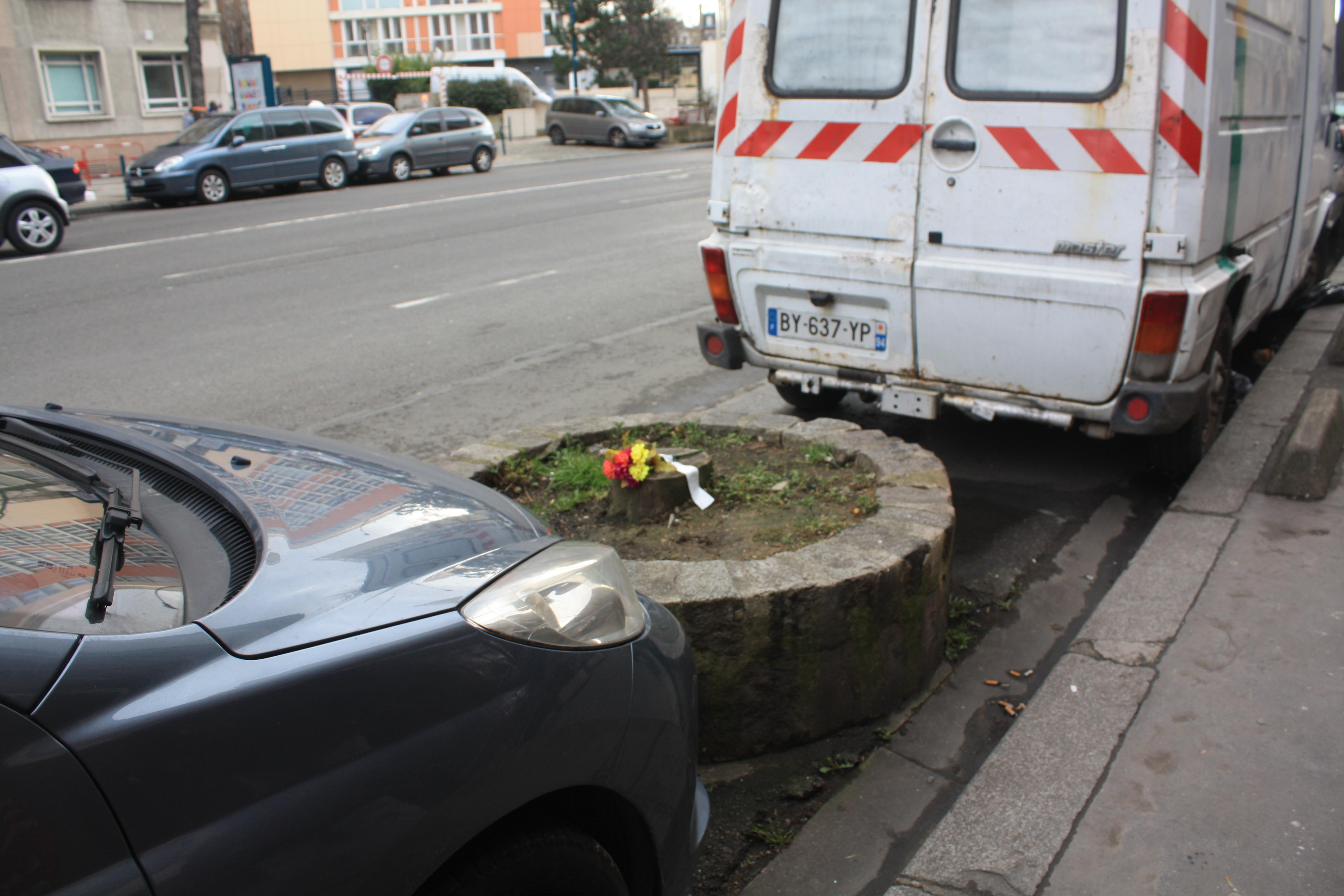 floral-prevention-link2