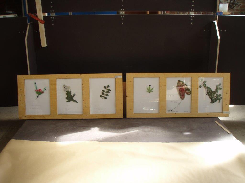 herbier-artificiel-2-ingrid-paola-amaro-2016